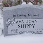 Ava Joan Shippy
