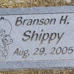Branson H. Shippy