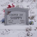 Cooper Jay Shippy