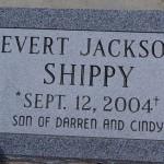 Evert Jackson Shippy
