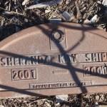Sheranda Kay Shippy
