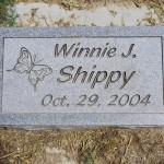 Winnie J. Shippy